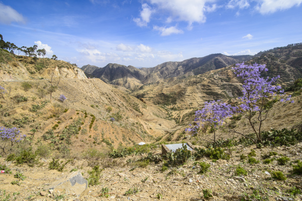 bucolic africa summit sights rock tip