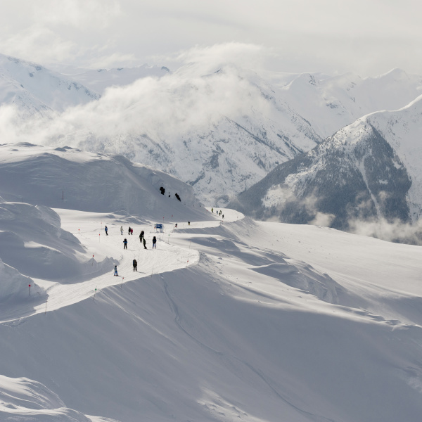 skiers on a snowy trail on