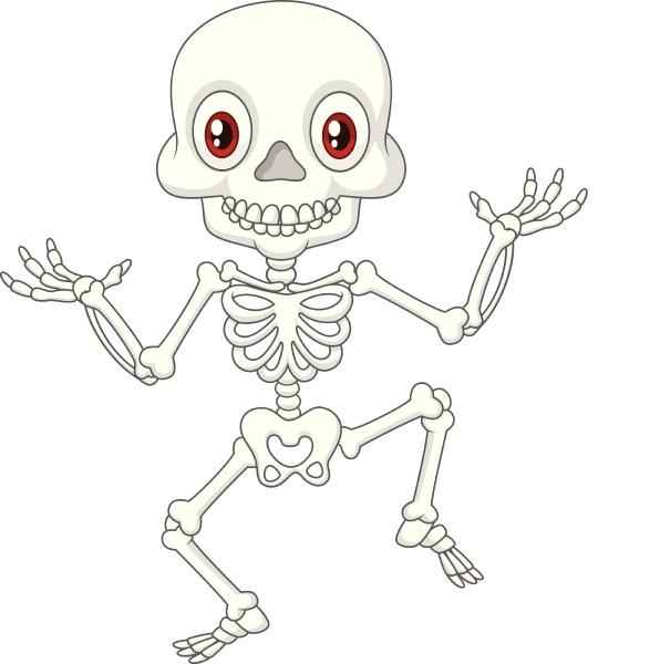 cartoon funny human skeleton