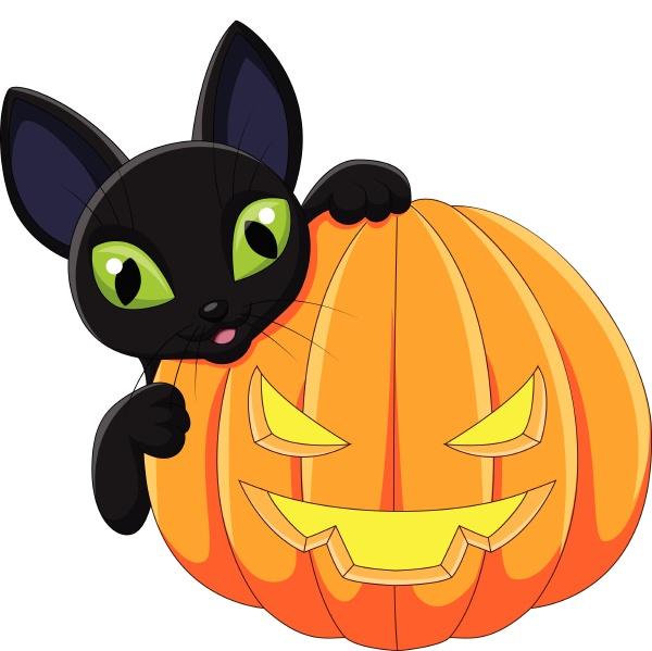 cartoon black cat with halloween pumpkin