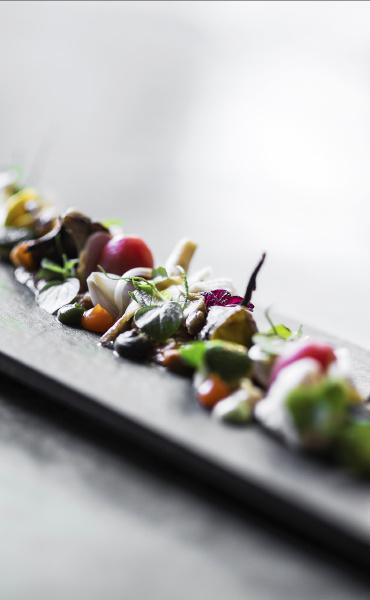 modern gourmet creative cuisine salad with