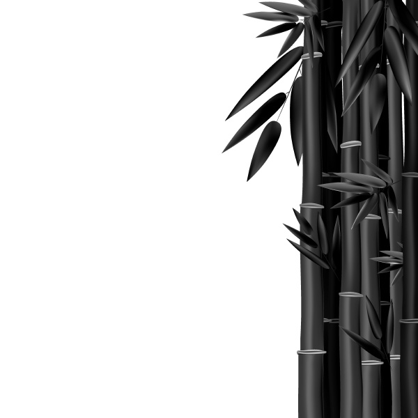 stems and bamboo leaves background