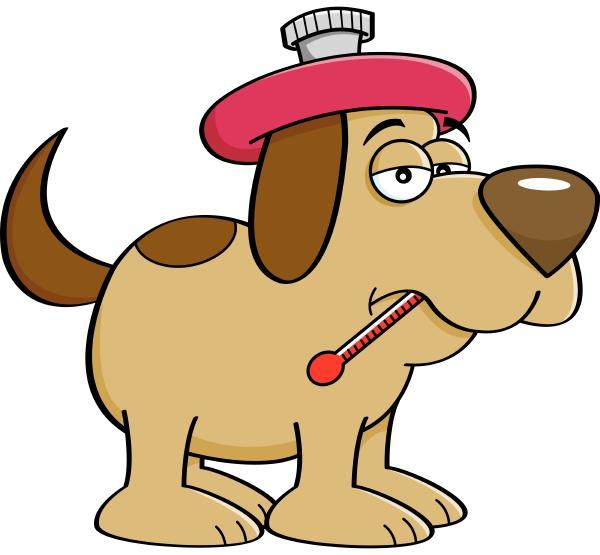 cartoon illustration of a sick dog