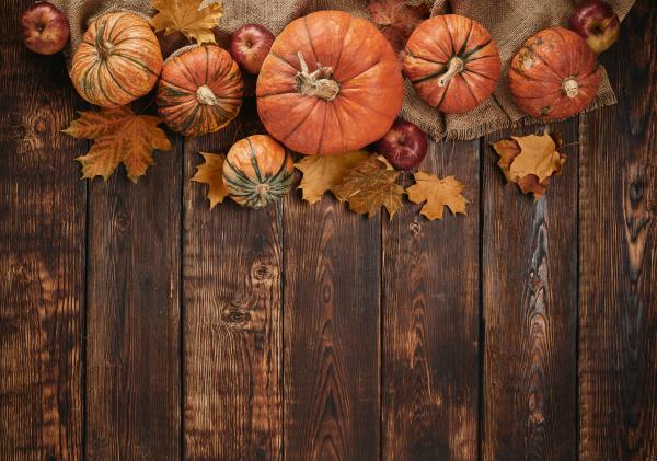 thanksgiving background autumn harvest