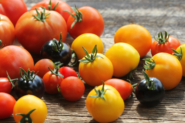 heirloom variety tomatoes on rustic table