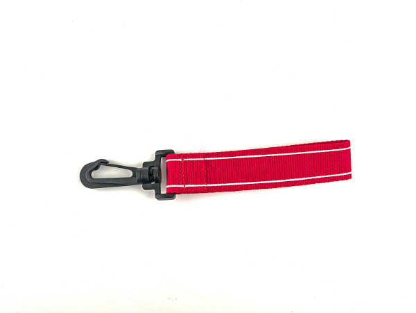 plastic carabiner on a white background