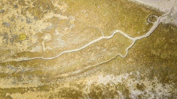 abstract aerial view of terschelling wetlands
