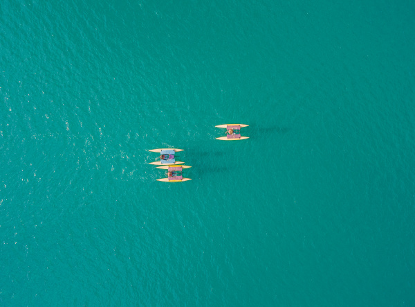 aerial view of group of people