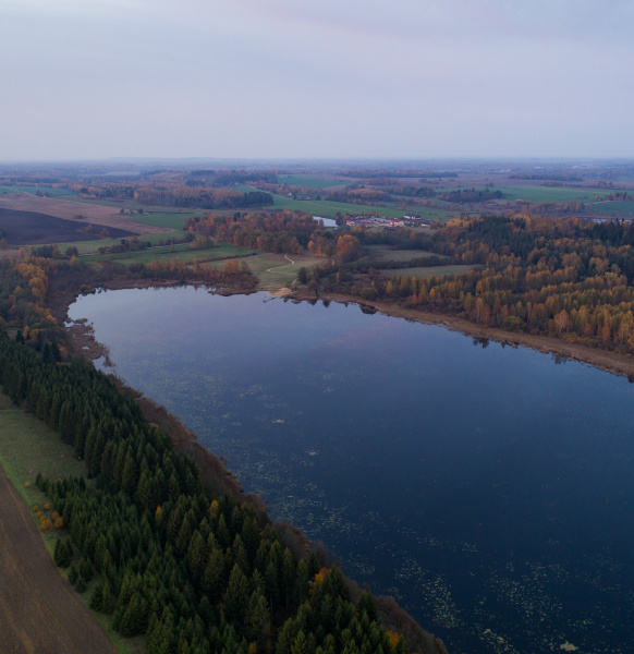 aerial view of lake near the