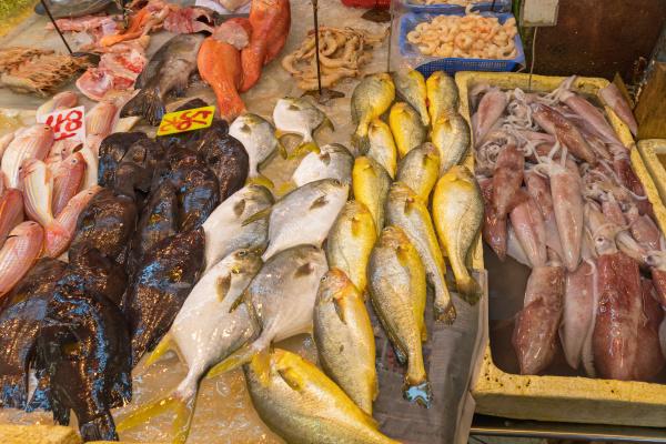 fish market variety