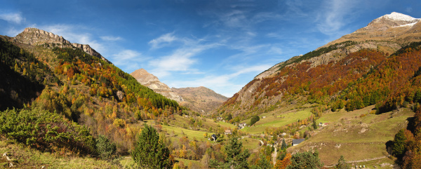 color of autumn at the mountain