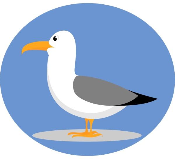 seagull illustration vector on white background
