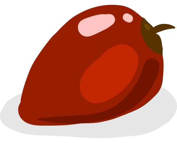 red tamarillo illustration vector on white