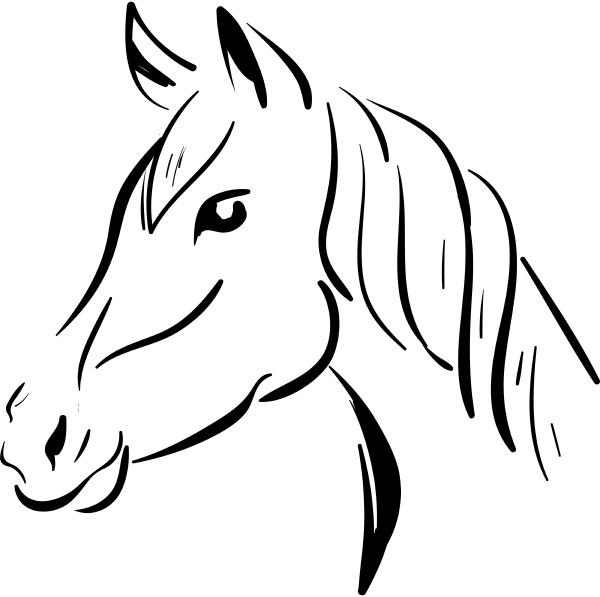 a horse sketch vector or color