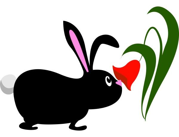 black bunny illustration vector on white