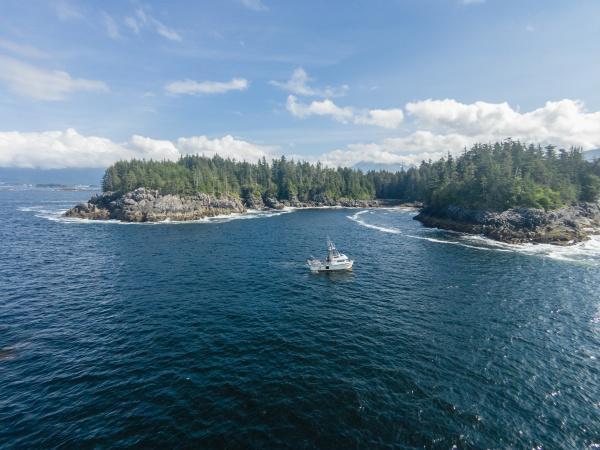aerial view of fisherman netting salmon