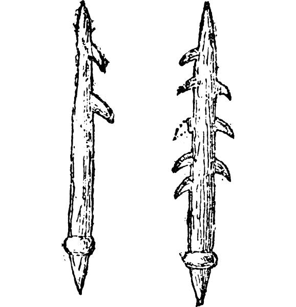 harpoons or barbed arrows vintage