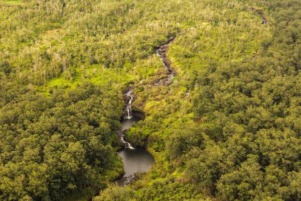 aerial view of waterfalls hilo watershed