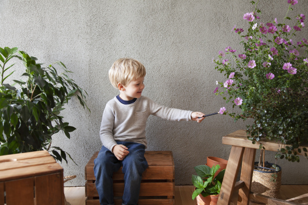 toddler touching flower with stick in