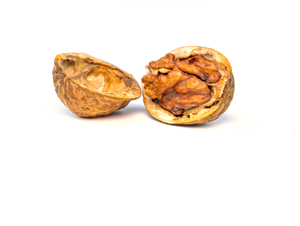walnuts on a white background with