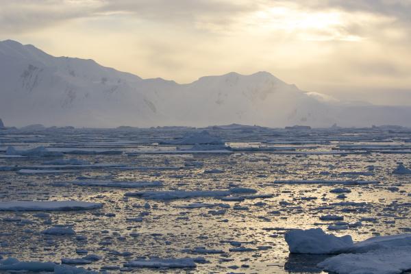 antarctica near adelaide island the gullet