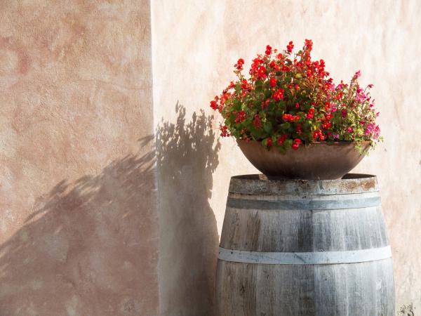 europe italy tuscany flower pot on