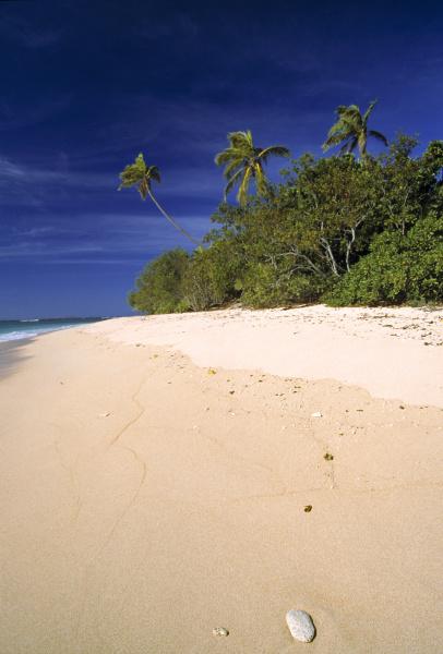 fiji islands tavarua a