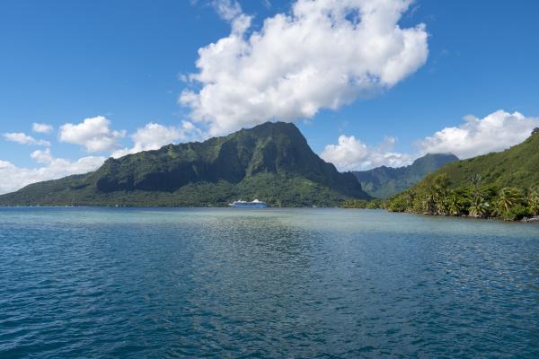 opuhunu bay moorea french polynesia