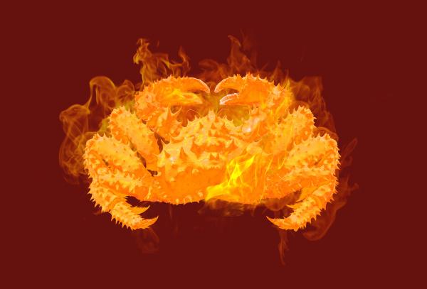 fire kamchatka crab