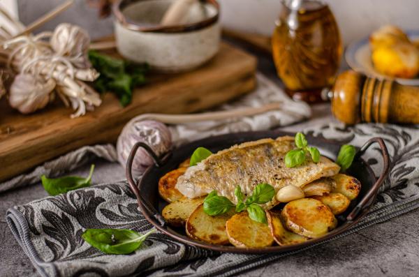 zander fish grilled
