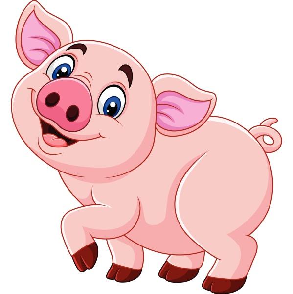 cartoon happy pig isolated on white