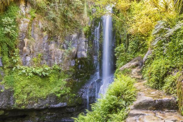 lower falls kaiate falls bay of