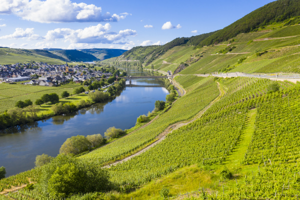 aerial view of mosel river amidst