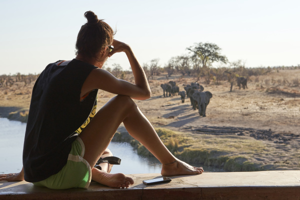 woman watching a herd of elephants
