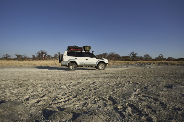 white off road vehicle with baobab