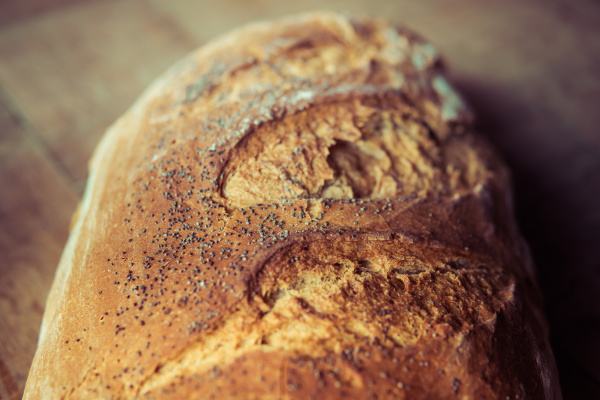 close up of a bread