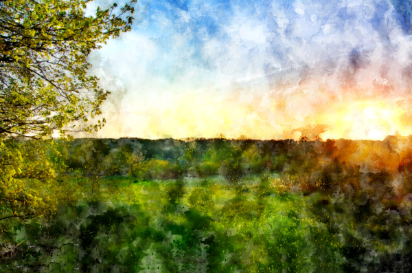 colorful spring dawn meadow trees sun