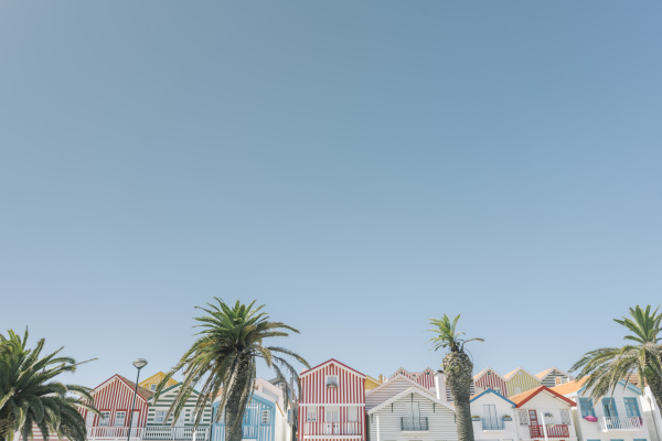 view of striped houses with palm