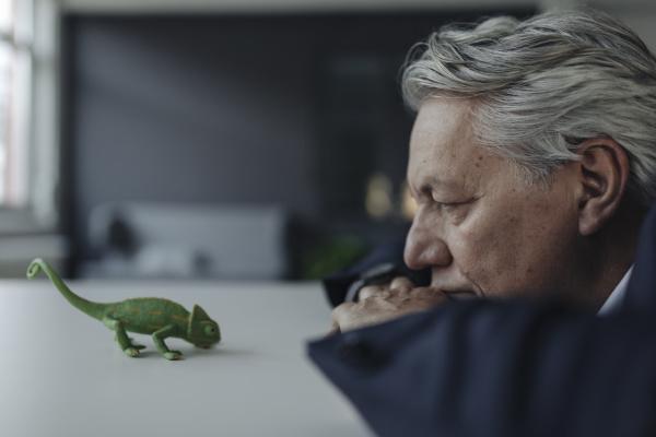 senior businessman looking at toy chameleon