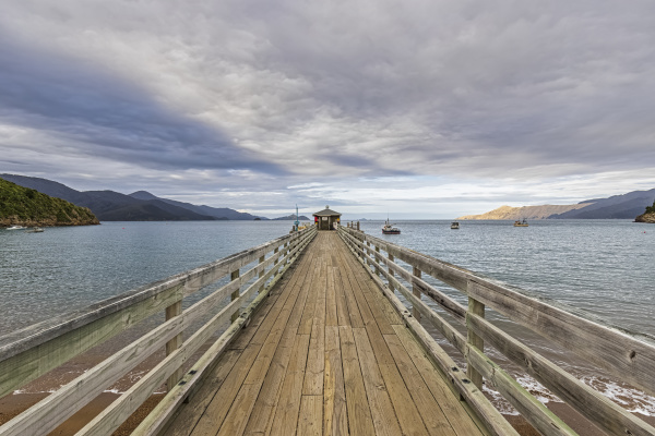 new zealand diminishing perspective of