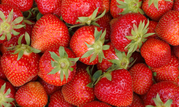 pile of fresh strawberries as background