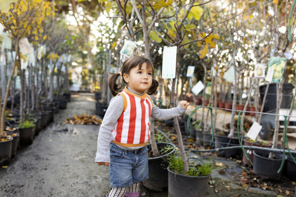 portrait of little girl exploring potted