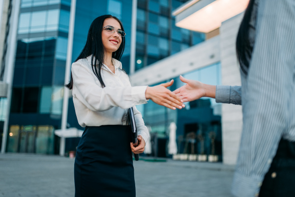 business woman handshake with partner