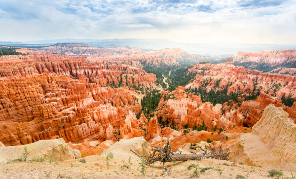 bryce, canyon, landscape, from, the, top - 28077342
