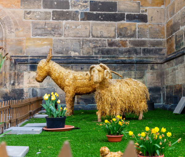 stuffed animals from hay on lawn