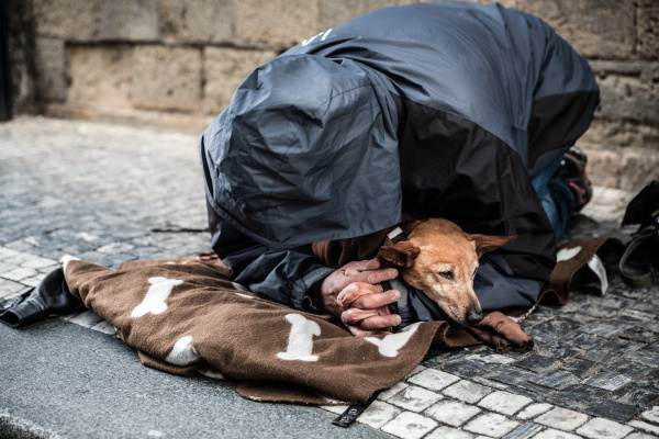 beggar with dog begging for alms