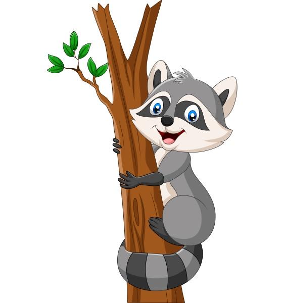 cartoon raccoon climbing on the tree