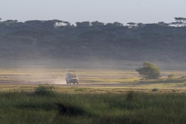 safari vehicle ndutu ngorongoro conservation area