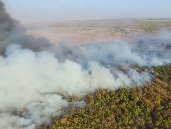 forest fire smoke of surrounding area