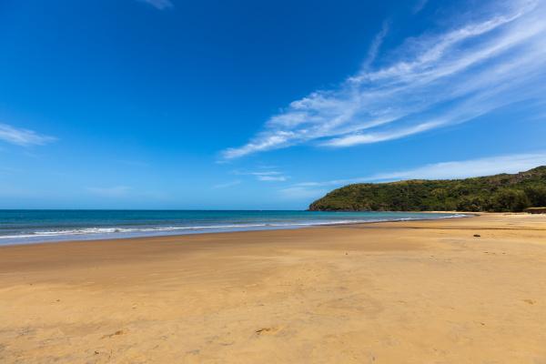 the beach of the island con